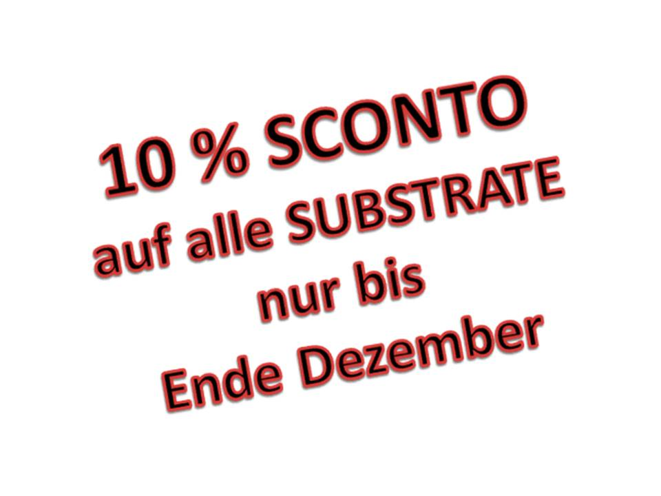 20161010-02-oktober-2016-newsletter-bonsaisubstrat-sconto